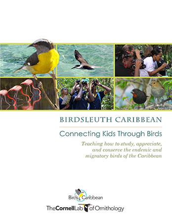 Download the complete BirdSleuth Caribbean curriculum.