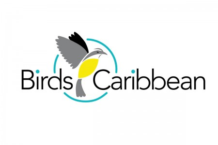BirdsCaribbean's new logo.