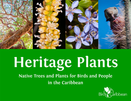 This ebook was created as a habitat restoration resource for International Migratory Bird Day 2015.