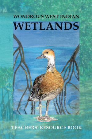 Wondrous West Indian Wetlands