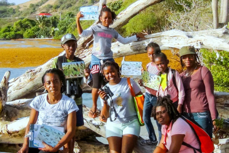Sustainable Grenadines led several guided bird tours in the Grenadines.