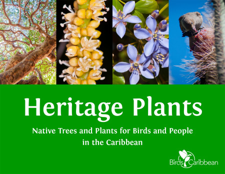 The free ebook, Heritage Plants, is a guide for backyard beautification and habitat restoration using native Caribbean plants and trees.