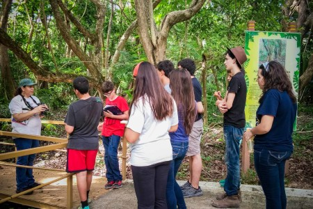 Ingrid Flores, Regional Coordinator of IMBD Caribbean, takes students birding in a recently restored wetland habitat at the Pterocarpus Forest at Palmas del Mar.