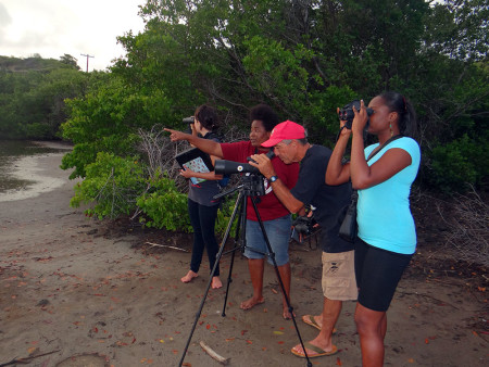 Orisha-Joseph-and-her-team-counting-waterbirds-at-Belmont-Salt-Pond,-Union-Island,-St.-Vincent-and-the-Grenadines