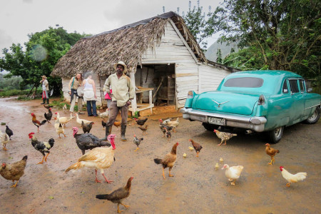 Man with fowl at tobacco farm in Viñales. (Photo by Susan Jacobson)