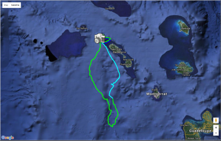 Map showing a single foraging trip of an adult tropicbird in the incubating stage. The bird flew around the island twice and then traveled past Montserrat towards Guadeloupe. The diet of tropicbirds primarily consists of pelagic species such as flying fish and squid.