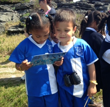 Budding birders learning to identify Bermuda's birds. (photo by Andrew Dobson).