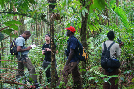 The team practicing point counts in St. Lucia's tropical montane forest. (photo by Pius Haynes)
