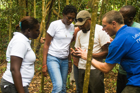 Showing the staff of the Department of Forestry how to use mist nets and safely extract birds. (photo by Steffen Oppel)