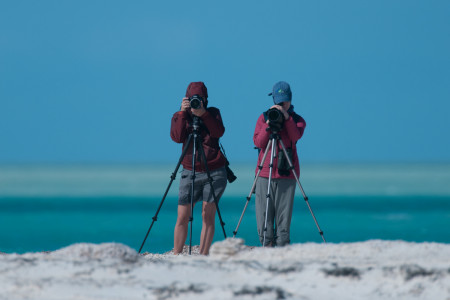 Braving the elements to conduct the census in the Bahamas. (photo by Walker Golder).