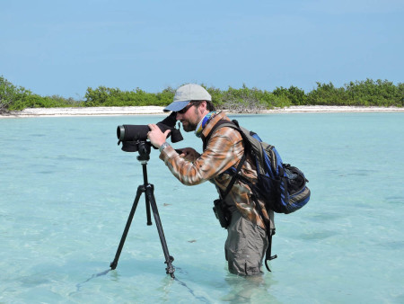 Wet work! Caleb Spiegel (USFWS) looks for plovers on Little Ambergris Cay, TCI. (photo by Craig Watson)