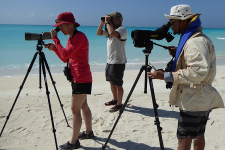 Elise Elliott-Smith, Craig Watson and Eric Salamanca count Piping Plovers on Fort George Cay, Turks and Caicos Islands. (photo by Caleb Spiegel).