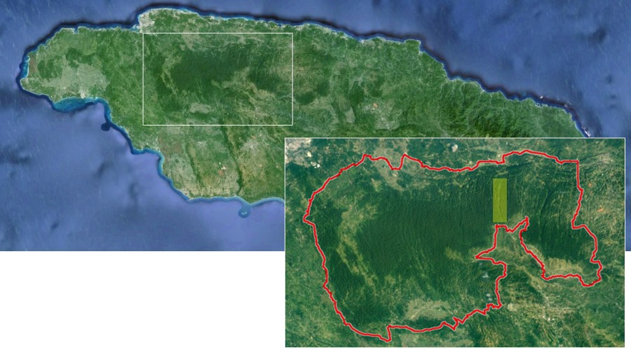 Satellite imagery of Jamaica, West Indies with the Cockpit Country region enlarged. The red line denotes the most current boundary of the Cockpit Country (source: Windsor Research Centre), and the yellow rectangle indicates Barbecue Bottom.