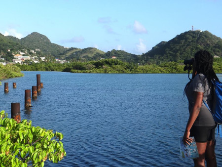 One of the CWC surveyors at Ashton Lagoon, Union Island, St. Vincent and the Grenadines. (photo by Kristy Shortte)