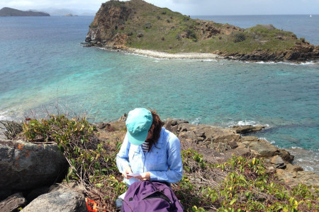 Dr. Louise Soanes, University of Roehampton, working on Seal Dog Islands. (photo by Jost Van Dykes Preservation Society)