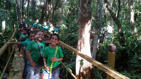 Students from the Luciano Rios Elementary School connecting with nature and looking for migratory birds in the boardwalk of the Pterocarpus Forest in Palmas del Mar of Humacao, PR as part of IMBD 2016 coordinated by Ingrid Flores.  (Photo by Janisse Rivera)