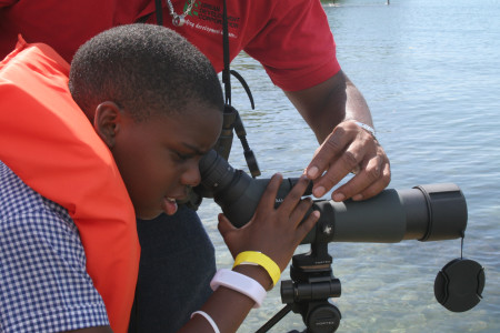 The CWC is also an excellent tool for engaging young people to learn about birds, as demonstrated by the National Environment Planning Agency in Jamaica.