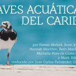 Free Ebook Shares Stories of Caribbean Waterbirds