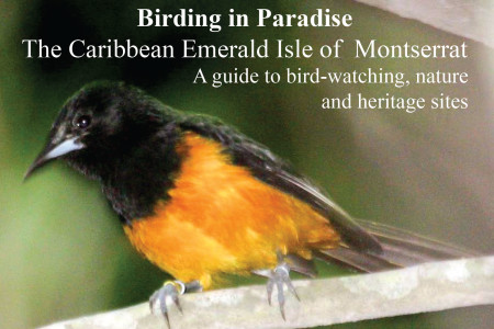 Perhaps the only guide you'll ever need for the island of Montserrat.