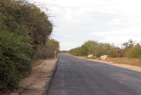 The road where the Kirtland's Warbler was spotted on Cayo Guillermo, one of the Cayo Coco Cays on the northern coast of Cuba. The road leads to Playa Pilar beach and beyond that to a new hotel under construction. (photo by Anne Goulden)