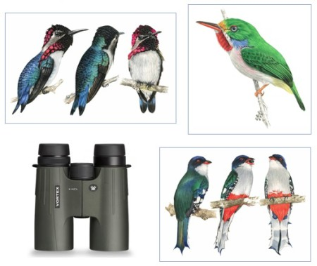 Raffle prizes include gorgeous endemic bird artwork and a fantastic pair of Vortex binoculars.