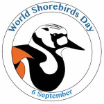 Celebrate World Shorebirds Day 2017 and join the Global Shorebird Count!