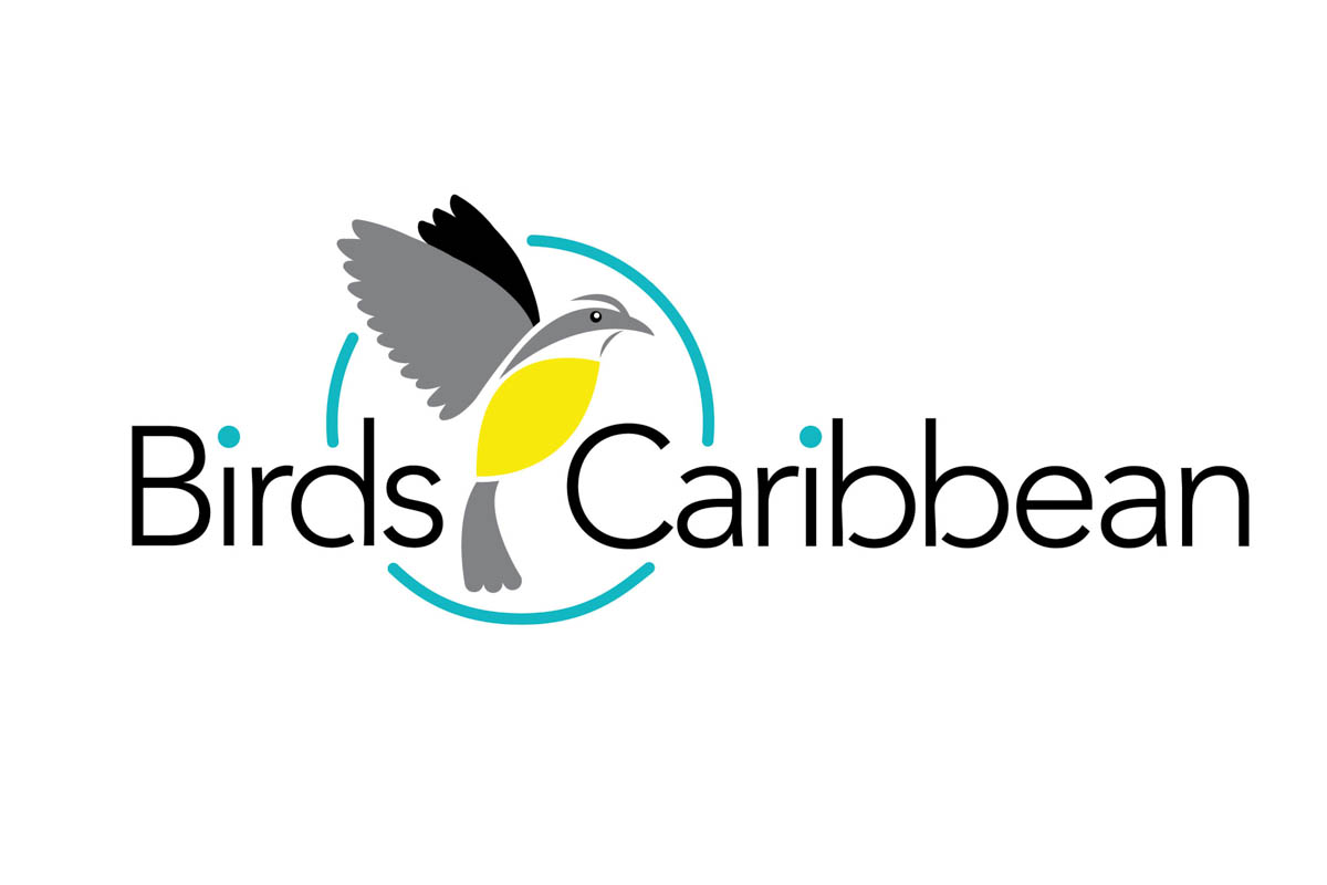 caribbean internet cafe case study Caribbean internet cafe case pdf royal caribbean international is a cruise line brand founded in norway and based in miami, florida, united statesit is owned by royal caribbean cruises ltd.