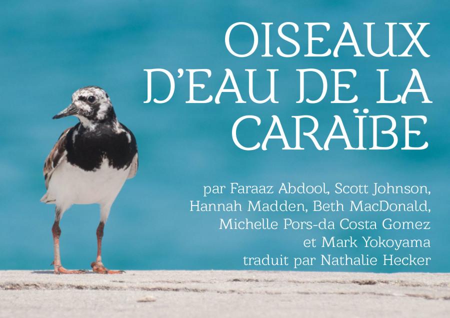 Oiseaux-deau-de-la-Caraibe-Cover