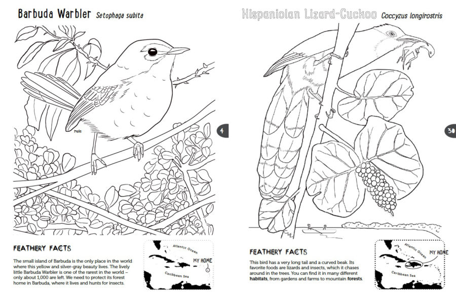 Coloring Pages | 584x900