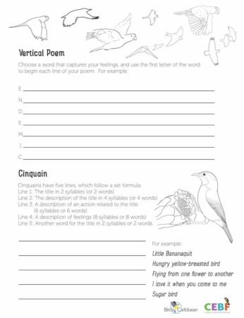 Caribbean Endemic Bird Festival Page 2 Birdscaribbean