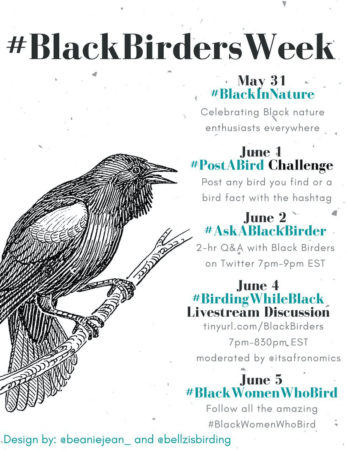 Conservation Page 3 Birdscaribbean